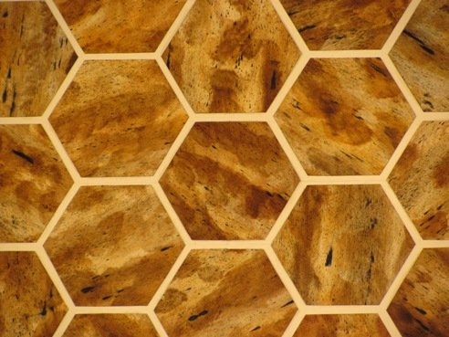 Faux Painted Tortoise Shell octagon pattern Estero, Bonita, 239 417 1888